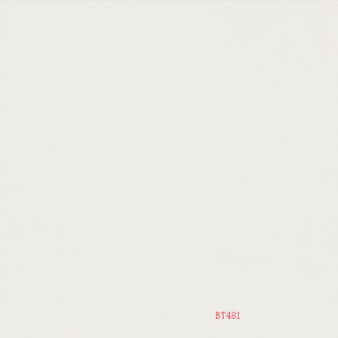 BTBL18160PA(BT481)
